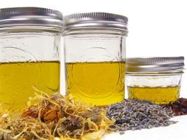 приготволение масляной вытяжки инфуза из календулы шиповника лаванды