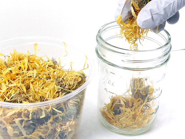 как сделать масляную вытяжку из растений