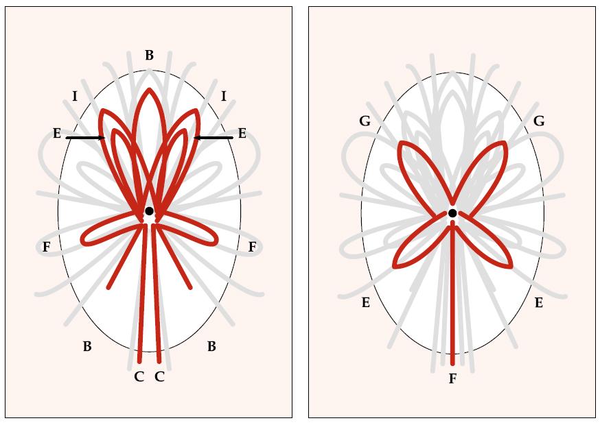 схема приклеивания лент к открытке Букет