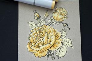 как раскрасить открытку