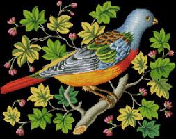 """Схема для вышивки """"Попугай на ветке"""""""