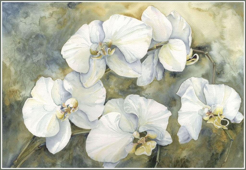 белые цветы картинки +для декупажа