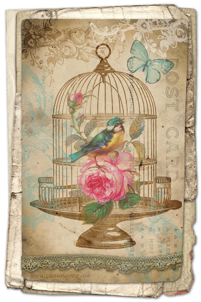 картинки для декупажа птица винтаж