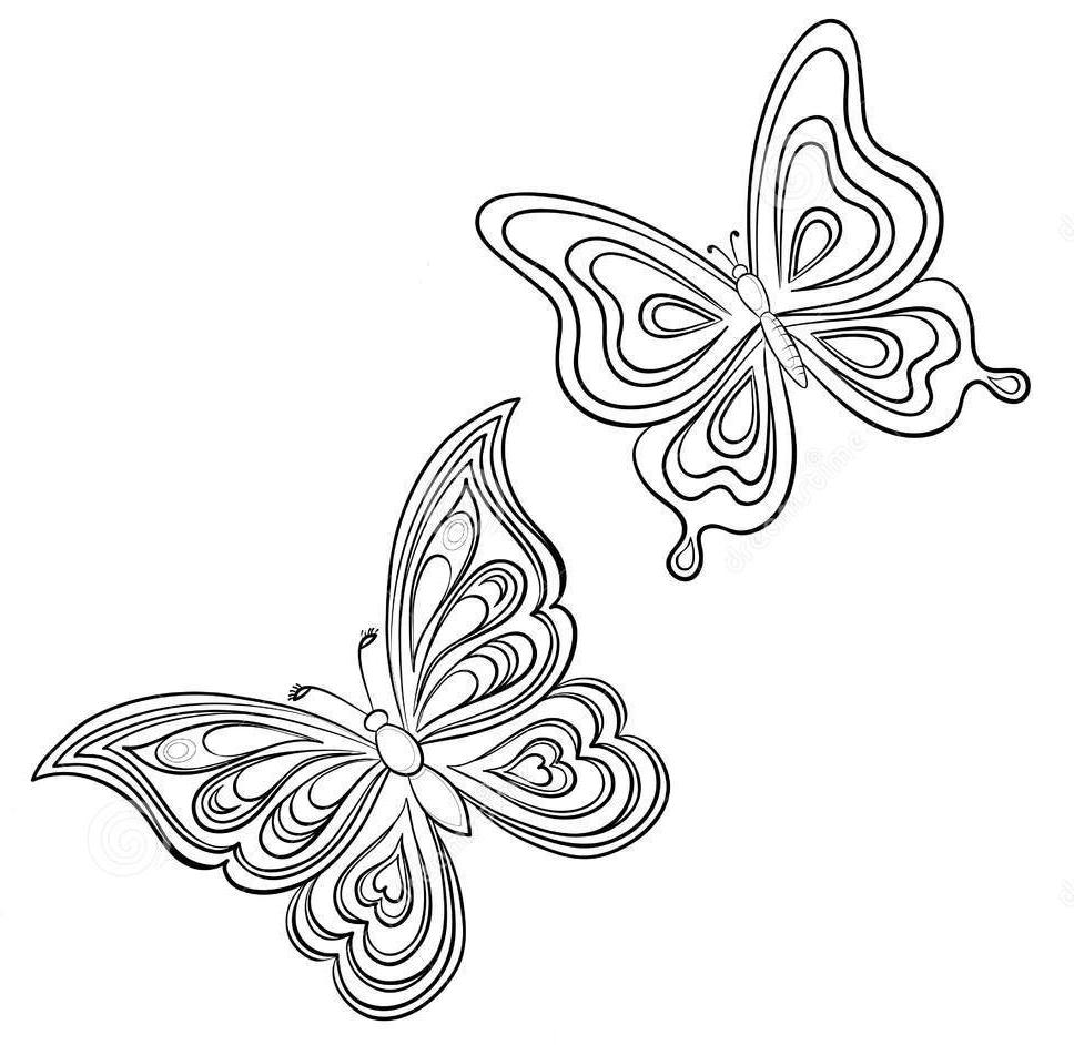 бабочки шаблоны распечатать
