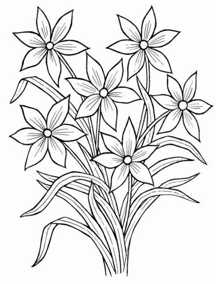 Рисунки цветов букеты