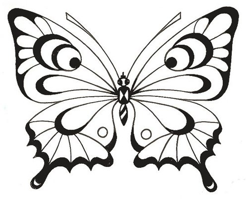 бабочки своими руками шаблоны