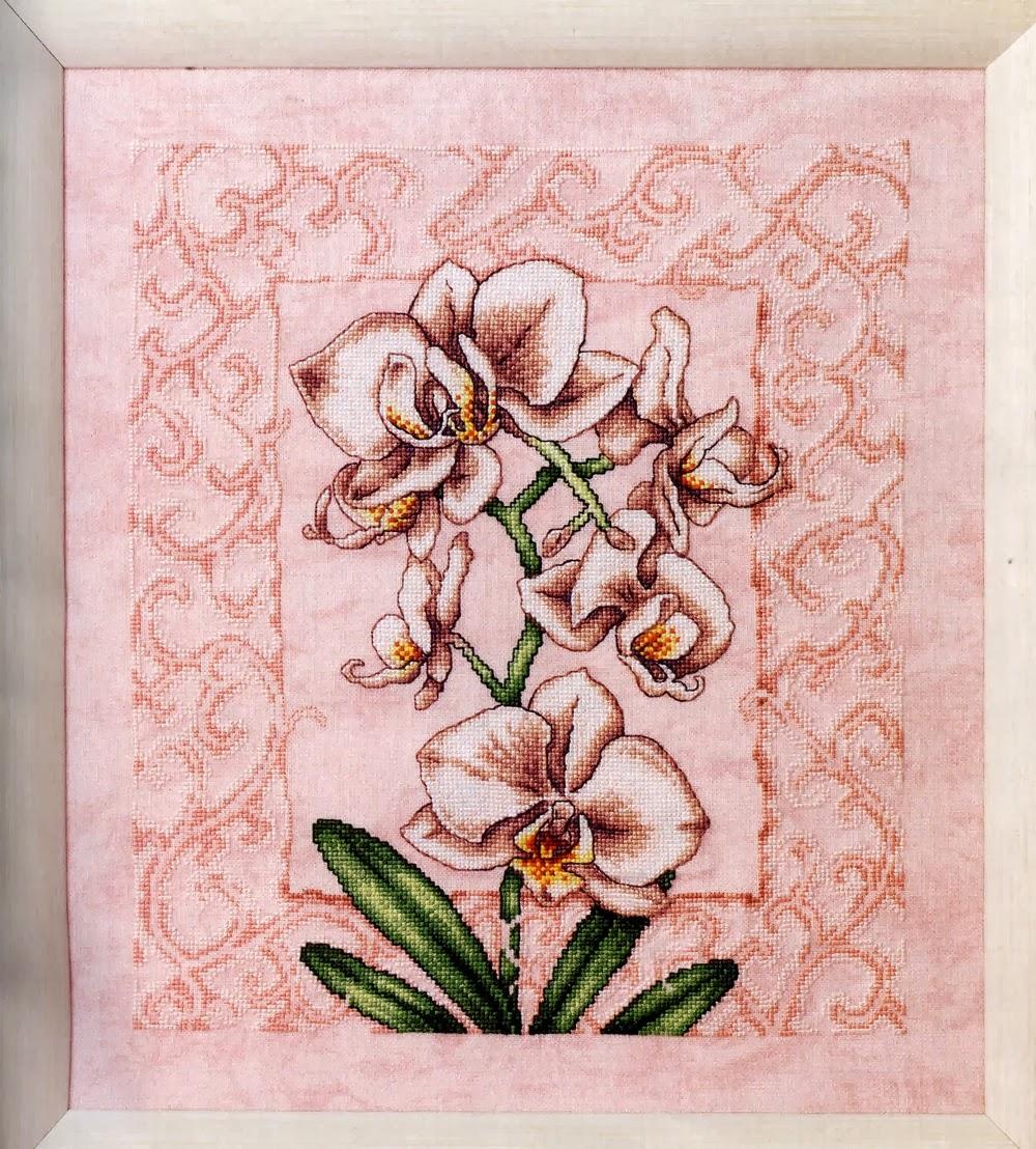 Розовая орхидея вышивка