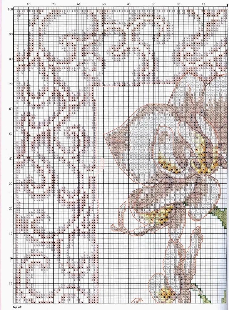 вышивка схема орхидея