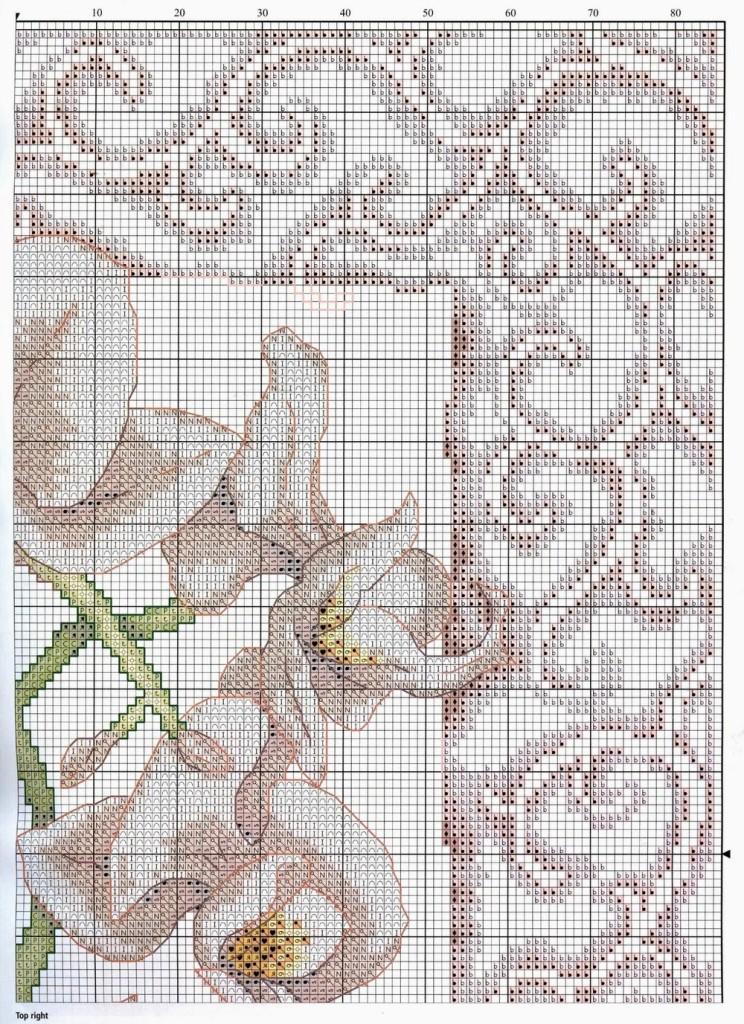 схемы орхидеи крестом