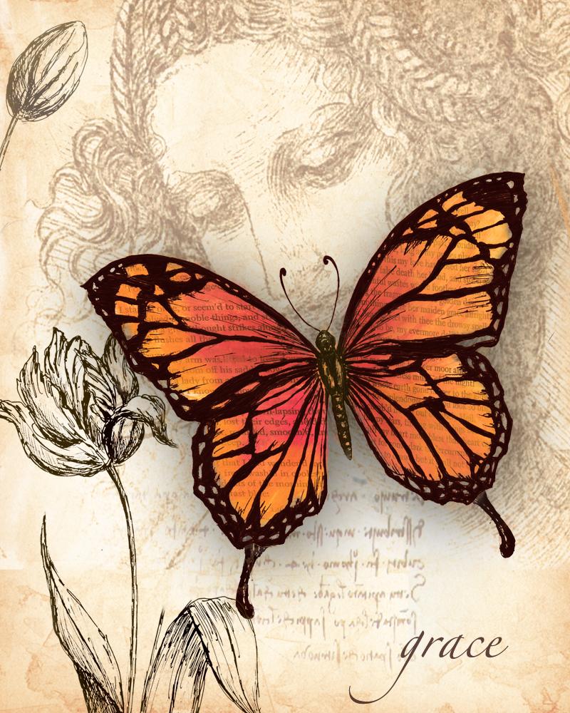 бабочки картинки для декупажа