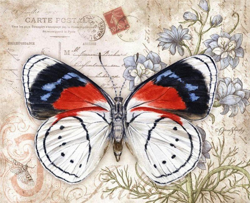 картинки для декупажа бабочки