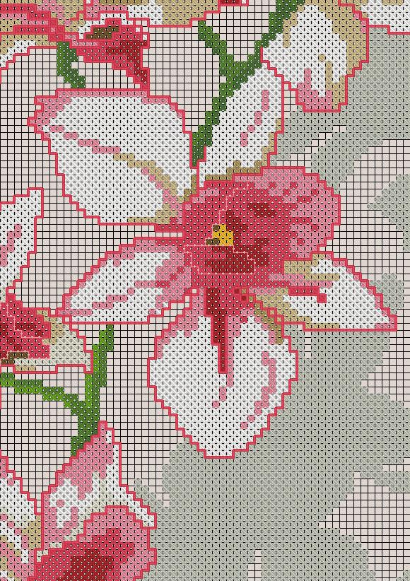 Рисунок для вышивки орхидеи 89