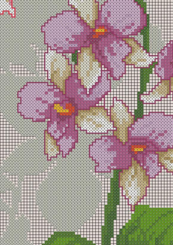 Вышивки схемы с орхидеями 311