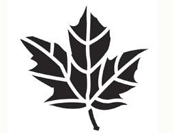трафарет лист клена